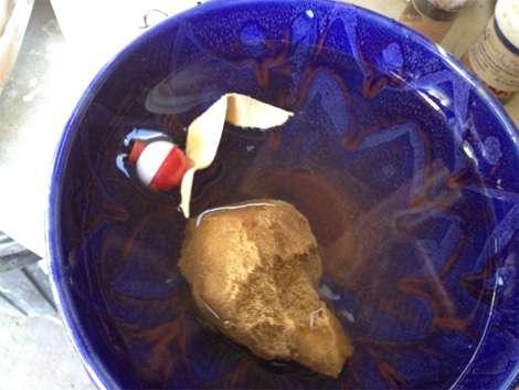 marian williams: chamois float